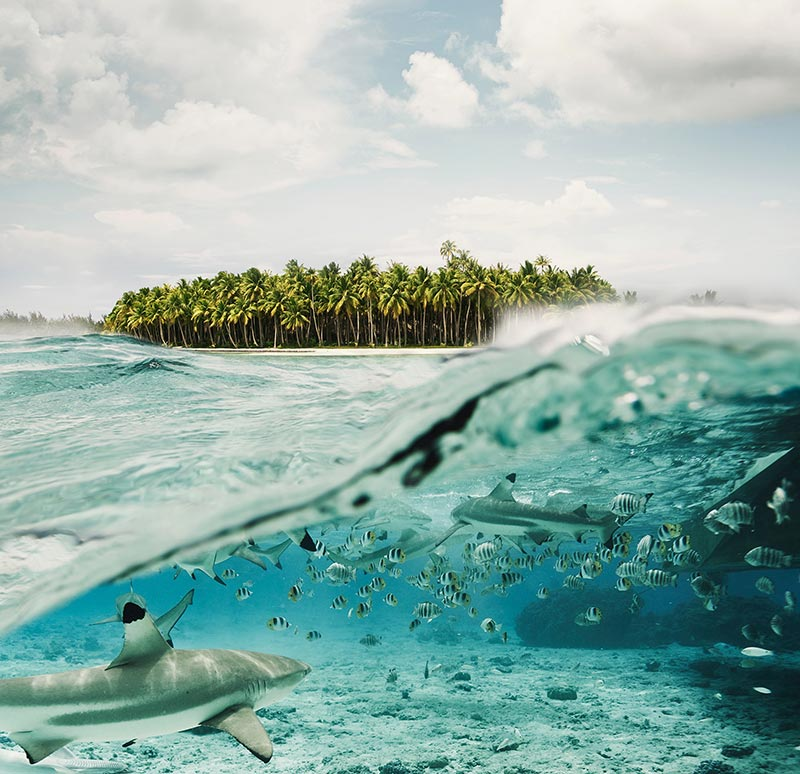 ocean-land-photo